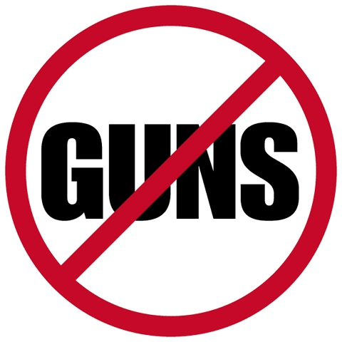 3-New-Petitions-Ask-for-Gun-Control-After-Elementary-School-Shooting-2