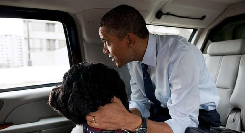 130527_bo_obama_car_whitehouse_328_978