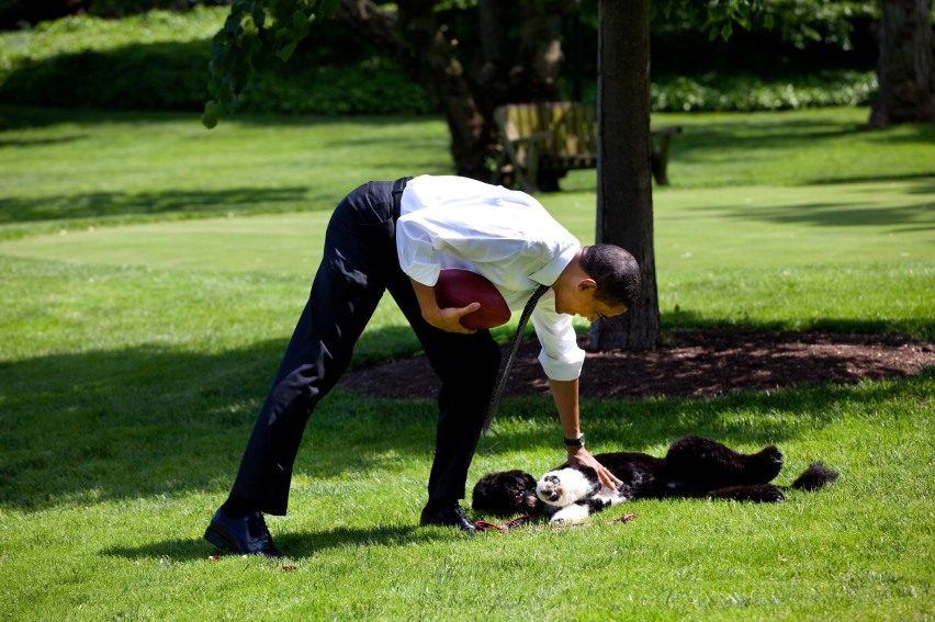 Barack_Obama_with_Bo_on_South_Lawn_5-12-09