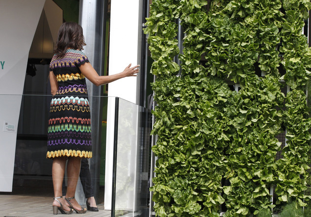 """U.S. first lady Michelle Obama, looks at the vertical garden of the United States pavilion at the 2015 Expo in Rho, near Milan, Italy, Thursday, June 18, 2015. Mrs. Obama is leading a presidential delegation Thursday to the world's fair, organized around issues concerning food and nutrition, which dovetails with the U.S. first lady's """"Let's Move"""" initiative to fight childhood obesity through diet and exercise. (AP Photo/Antonio Calanni)"""