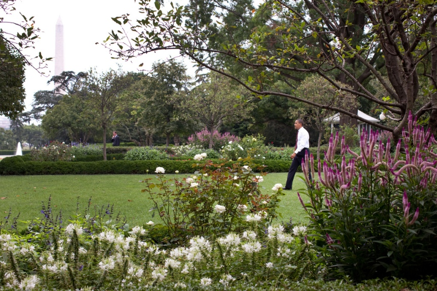 President Barack Obama walks through the Rose Garden after moving his senior staff meeting outdoors to take advantage of a pleasant summer day in Washington, August 12, 2009. (Official White House photo by Pete Souza) This official White House photograph is being made available only for publication by news organizations and/or for personal use printing by the subject(s) of the photograph. The photograph may not be manipulated in any way and may not be used in commercial or political materials, advertisements, emails, products, promotions that in any way suggests approval or endorsement of the President, the First Family, or the White House.