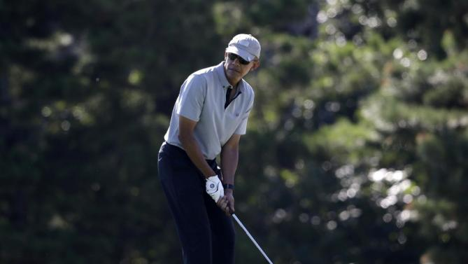 President Barack Obama prepares to chip onto a green while golfing Wednesday, Aug. 12, 2015, at Farm Neck Golf Club, in Oak Bluffs, Mass., on the island of Martha's Vineyard. The president, first lady Michelle Obama, and daughter Sasha are vacationing on the island. (AP Photo/Steven Senne)