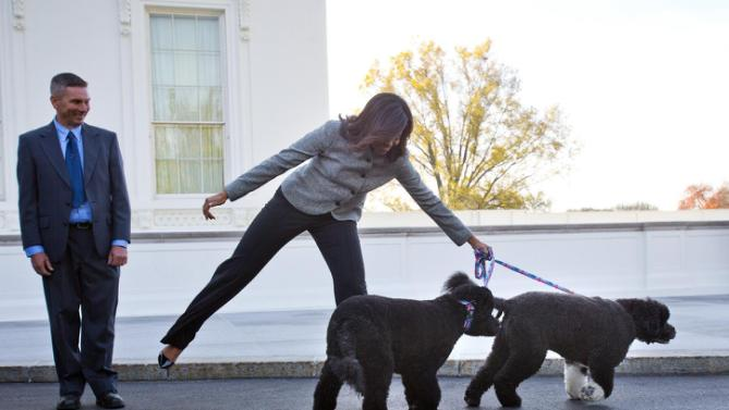 First lady Michelle Obama is pulled away by her dogs Bo and Sunny, after welcoming the Official White House Christmas Tree to the White House in Washington, Friday, Nov. 27, 2015. This year's White House Christmas tree, which will be on display in the Blue Room, was presented by Glenn Bustard, left, from Bustard's Christmas Trees in Lansdale, PA. (AP Photo/Pablo Martinez Monsivais)