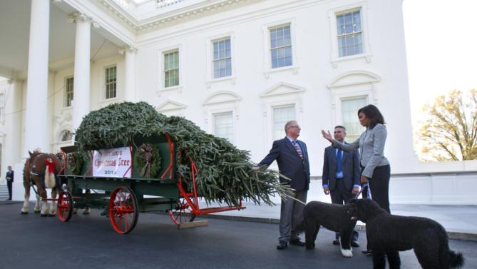 First lady Michelle Obama with her dogs Bo and Sunny, welcome the Official White House Christmas Tree to the White House in Washington, Friday, Nov. 27, 2015. This year's White House Christmas tree, which will be on display in the Blue Room, was presented by Jay Bustard, left, and his brother Glenn Bustard, center, from Bustard's Christmas Trees in Lansdale, PA. (AP Photo/Pablo Martinez Monsivais)